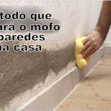Este método é natural e vai eliminar o mofo das paredes de sua casa. Aprenda