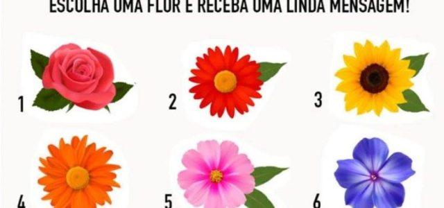 Escolha uma flor e receba uma mensagem de encorajamento para sua vida