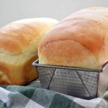 Pão de Mandioquinha Salsa